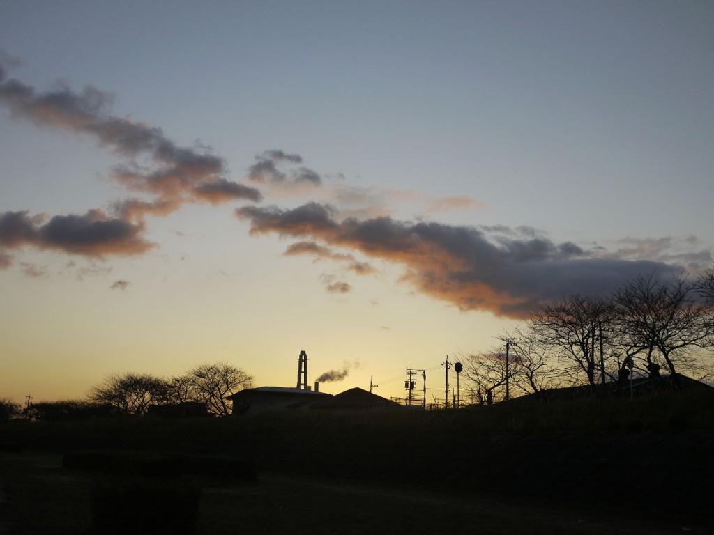 タローを散歩に連れて行く海蔵川の朝 LUMIX DMC-GF!