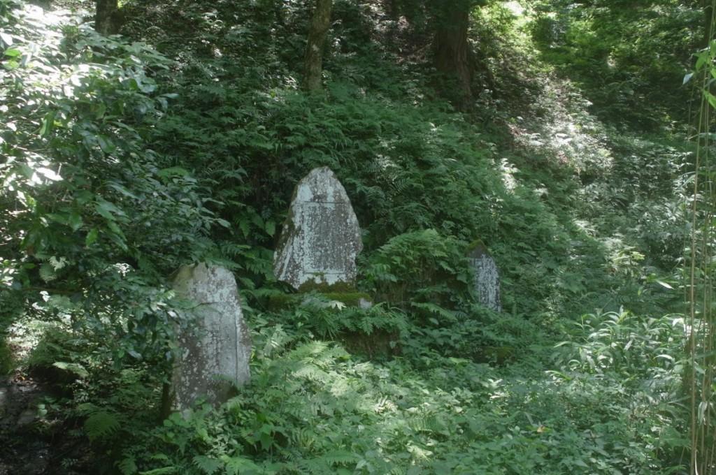 山道にあった石碑 GXR A12 28mm