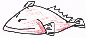 写真の代わりに記憶で描いたホウボウ。全体の3分の1が頭というイメージだ。