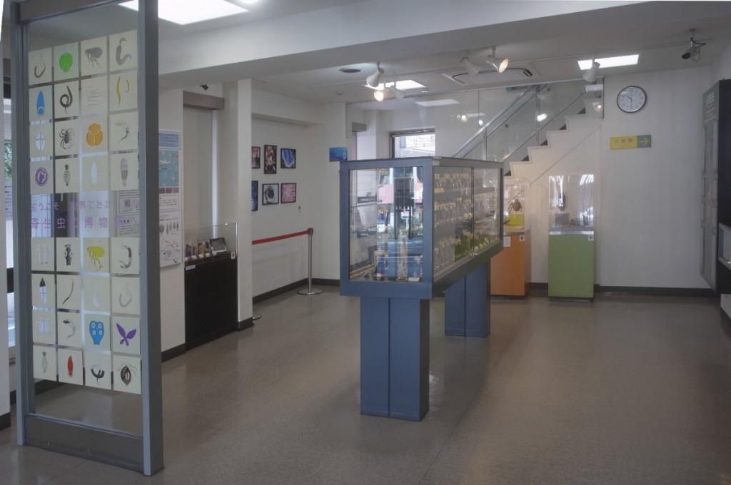 目黒寄生虫館の展示スペース。明るく開放的に展示することで、広く啓発したいという健全かつ積極的な姿勢がすばらしいと思う。
