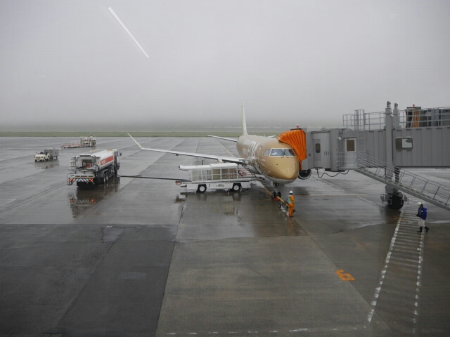熊本空港。搭乗した飛行機